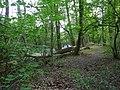Langenfeld Nähe Haus Graven 0023.jpg