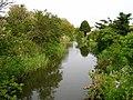 Langney Sewer, Langney - geograph.org.uk - 176276.jpg