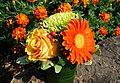 Last flowers in summer - panoramio.jpg