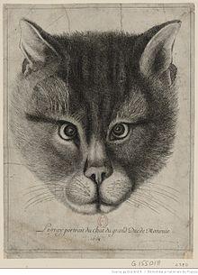Мартовский кот это википедия