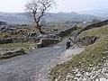 Limestone outcrops near Lower and Upper Winskill - geograph.org.uk - 1015534.jpg