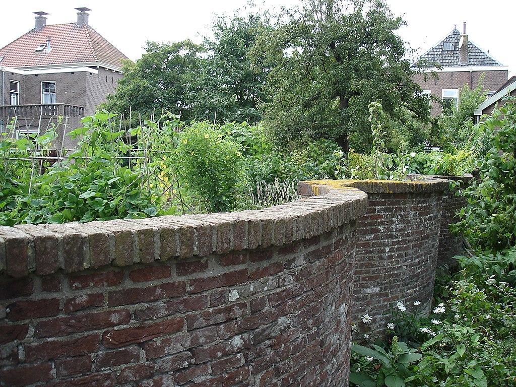 fruitmuur slingermuur Linschoten ten zuiden van Sint Janskerk
