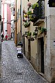 Lisboa 20171226-DSCF1059 (39374934752).jpg