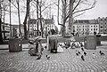 Ljubljana - Kongresni trg - hranjenje golobov.jpg