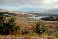 Loch Riecawr View - geograph.org.uk - 1063467.jpg
