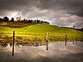 Loch Utch HDR - panoramio.jpg