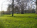 London St James's Park - winter green - panoramio.jpg
