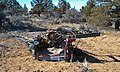 Long abandoned stripped vehicle in the Prineville area.jpg