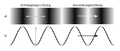 Longitudinalwelle Transversalwelle.png