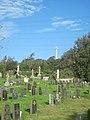 Looking towards column from graveyard - geograph.org.uk - 2109511.jpg