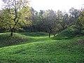 Lysolaje, třešňový sad u Houslí.jpg