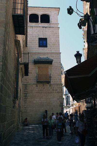 Fichier:Málaga-Palacio de los Condes de Buenavista-2011092110534.jpg