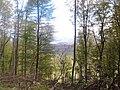 Mátra - panoramio (1).jpg