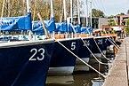 Münster, Boote am Aasee -- 2016 -- 2375.jpg