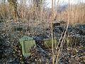 MOs810 WG 2017 2 (Notec Polder) (Gorecko, old evang. cemetery) (6).jpg