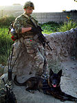 MWD handler earns AFCAM for heroism during firefight 130405-F-YJ424-002.jpg
