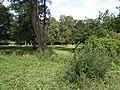 Maarssen 520322 tuin Vredenhoef.JPG