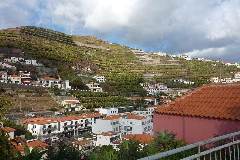 File:Madeira - Câmara de Lobos (33492118206).jpg