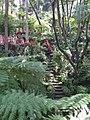 Madeira - Monte - Jardim Tropico (2092624695).jpg