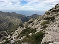 Mallorca (21941456933).jpg