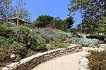 Manhattan Beach Botanical Garden - Manhattan Beach, CA - DSC01190.jpg