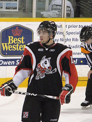 Marco Insam - Marco Insam playing for the Niagara IceDogs during the 2009-10 OHL season.