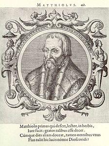 ピエトロ・アンドレア・マッティオリ's relation image