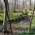 Meandering stream in Loantaka Brook Reservation in NJ.JPG