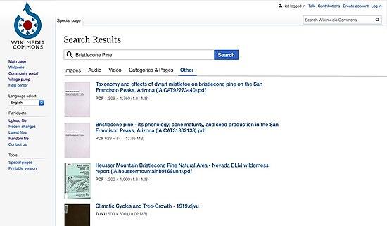 Media search other tab.jpg