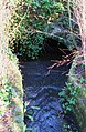 Mediaeval bridge over Cowgarth Burn in the Seal - geograph.org.uk - 673086.jpg