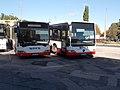 Mercedes Citaro buszok a vasútállomás végállomáson, 2017 Székesfehérvár.jpg