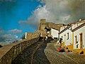 Mertola Castle Wall (14213542486).jpg