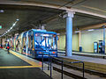 Metro Light Rail Pyrmont Bay Tram Stop.jpg