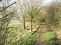 Mid section of path from Broad Lake to Southmoor Lane - geograph.org.uk - 1217892.jpg