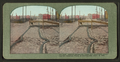 Mission Street car track and pavement showing the resistless power of earthquakes, April 18, 1906, from Robert N. Dennis collection of stereoscopic views.png