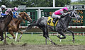 Monmouth Park racing on June 4, 2011.jpg