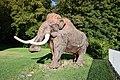 Monrepos, Neuwied - Mammut Max.jpg