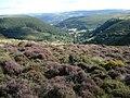 Moorland on Maesyrychen Mountain - geograph.org.uk - 541881.jpg