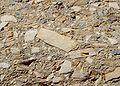 Mosaic Canyon breccia.JPG