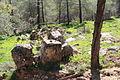 Mount Eitan IMG 2654.JPG