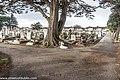 Mount Jerome Cemetery -(8371824784).jpg