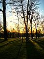Mount Royal Park3.JPG