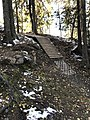 Mountain bike downhill 02.jpg