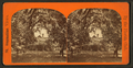 Mrs. H.B. Stowe's Place at Mandarin, from Robert N. Dennis collection of stereoscopic views.png