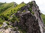 Mt.Kinposan(Kinpohsan) 20130707-P7070103 (9256959504).jpg