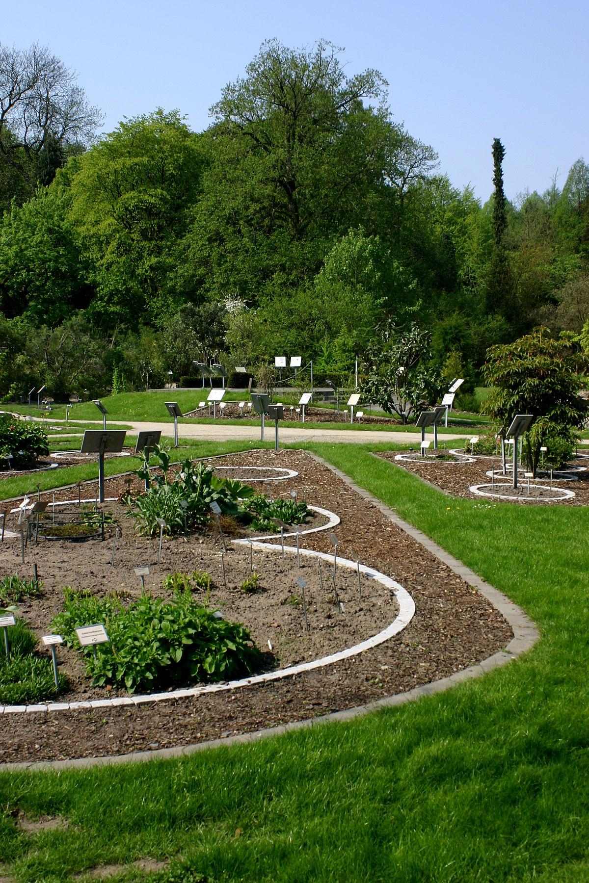 Botanischer Garten Münster Wikidata