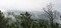 Munnar - views from Munnar (37).jpg