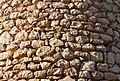 Mur d'un molí del Collao de Benissa.JPG