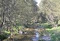 Murrurundi Pages River 001.JPG