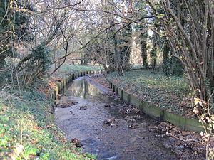 Mutton Brook - Mutton Brook in Brookside Walk